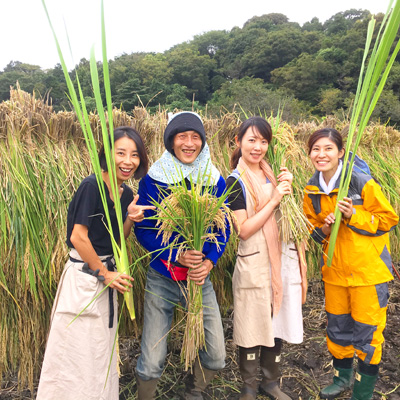 稲刈りに行ってきました。