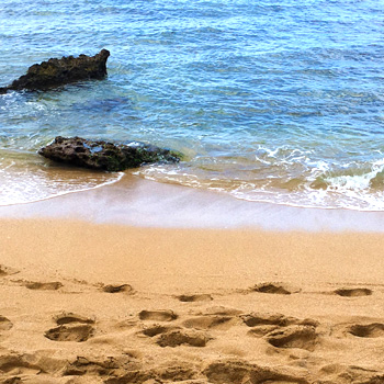 ノースショアのアリイビーチ